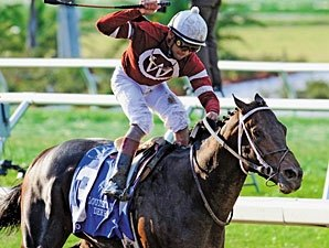 Pyro Seeks Northern Dancer Redemption