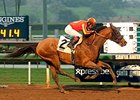 Hoppertunity Aims for More Kentucky Success