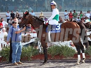 Smart Bid wins the 2011 Mervin Muniz.