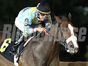 Chrome Mine wins the 2014 Ann Hilton Handicap.