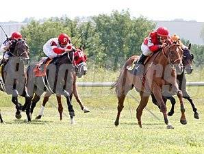 Rahystrada wins the 2011 Kentucky Cup Turf.