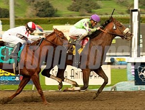 Thirtyfirststreet in the 2010 California Breeders Champion Stakes.