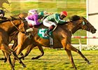 Vacare Scratched from Keeneland Sale