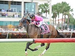 Bad Debt wins the 2013 Millions Turf Preview Stakes.