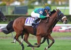 NY Champ Banrock Retired