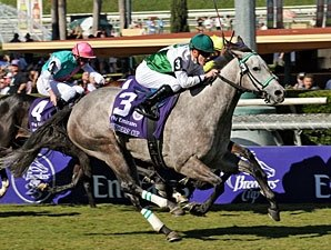 Forever Together Chasing Repeat in F&M Turf
