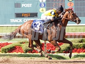 Awesome Gem wins the Lone Star Handicap.