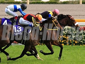 Apapane wins the Victoria Mile in Japan.