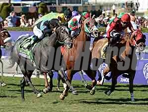 Mizdirection wins the 2013 Breeders' Cup Turf Sprint