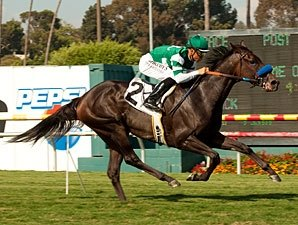 Lady of Shamrock Looks Solid in Del Mar Oaks