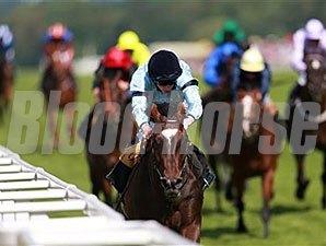Telescope in the British Stallion Studs Supporting British Racing E.B.F. Maiden Stakes.