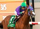 'Chrome' Among 388 Nominees for Royal Ascot