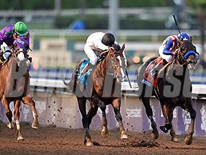 Bayern wins the 2014 Breeders' Cup Classic.