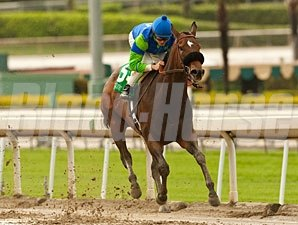 Include Me Out wins the 2012 Santa Margarita.