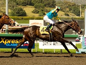 Ky. Derby Trail: Coast Clash Looms Big