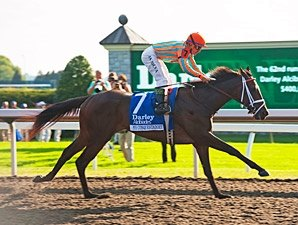 My Conquestadory's Dam to Fasig-Tipton Sale