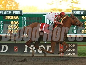 Loving Dove wins the 2010 Jersey Juv Colt.