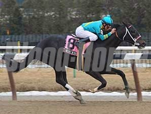 I Want Revenge wins the 2009 Gotham