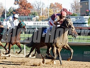 Dialed In wins his debut on November 12, 2010.