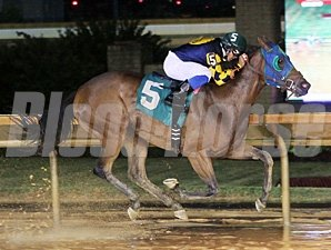 Nana Anna wins the 2013 Rachel's Turn Stakes.