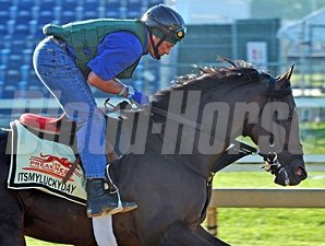 Itsmyluckyday - Pimlico, May 17, 2013.