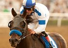 Twirling Candy Leads Hollywood Gold Cup Cast