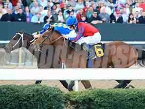 Fastestwhogetspaid wins the 2012 Gazebo Stakes.