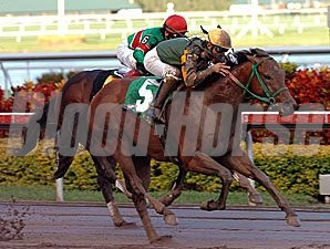 Smooth Air flies to victory in the Hutcheson.
