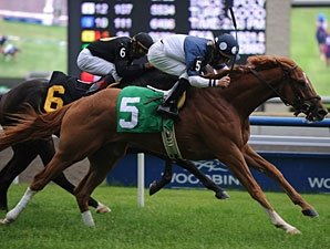 13 to Test Distance in Breeders' Stakes