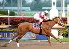 Eight Belles Attracts Maximum 14-Horse Field
