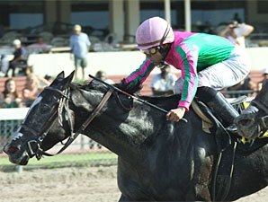 Wolfson Enters Four in Princess Rooney