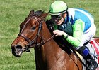 Ageless to Skip BC Turf Sprint