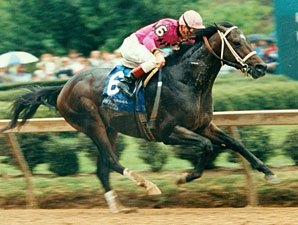 Rockamundo, Upset Arkansas Derby, Dies