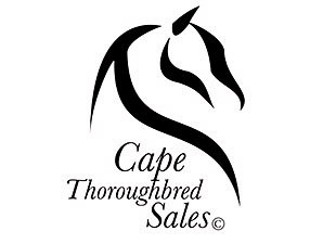 Cape Town Yearling Sale Starts Jan. 24