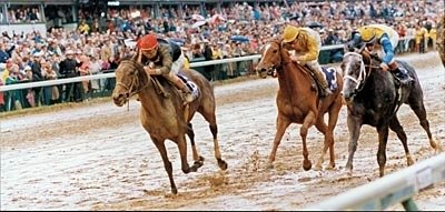 Many consider Personal Ensign's dramatic finish in the 1988 Breeders' Cup Distaff the most memorable moment in Breeders' Cup History.