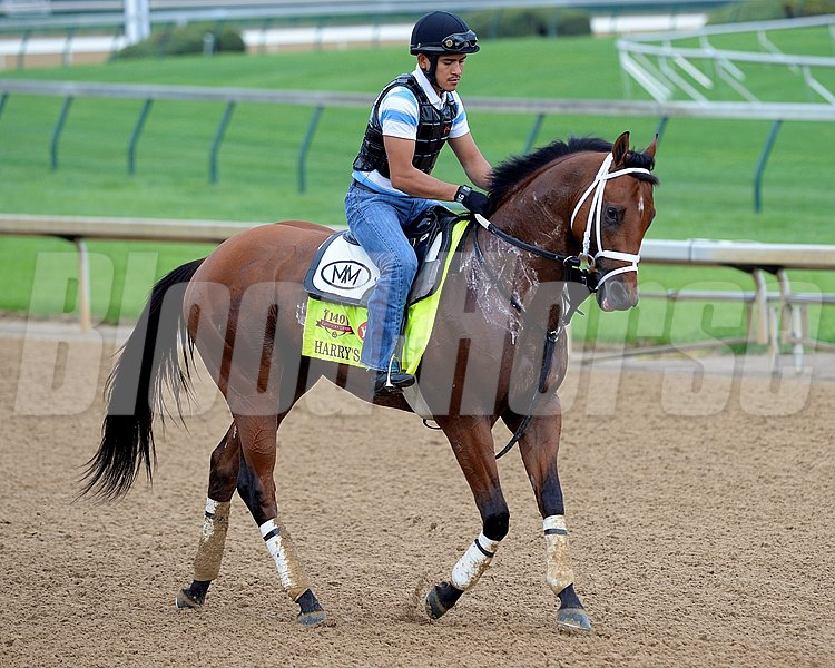 Caption: Harry's Holiday