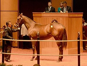 Fasig-Tipton Opener Gains Across the Board