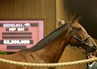 High-End Buys Keep Keeneland Sale Hopping