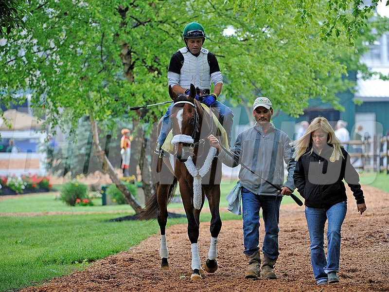 Mucho Macho Man with trainer Kathy Ritvo goes out for his morning work May 19, 2011 at Pimlico Race Course in Baltimore, MD.