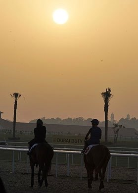 Dubai morning sun over the Meydan track.