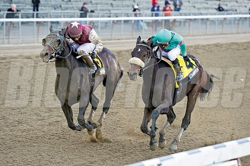Stanwyck, making her stakes debut off nearly a three-month layoff, captured the $200,000 Grade III Turnback the Alarm Handicap at odds of 21-1 by a head over favored Centring at Belmont Park.