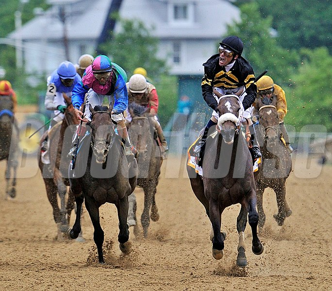 Calumet Farms Oxbow, (R) Gary Stevens up, wins the 138th running of the Gr1 Preakness...