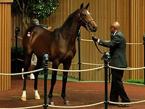 Bernardini Filly Sells for $1.3M at Keeneland