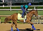 Derby: War Story, Mr. Z to Breeze Wednesday