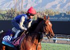 Aktabantay Chases Miami Mile Success