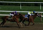 Saratoga Diary: Following a Blue Moon