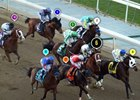 2013 Breeders' Cup Classic Race Sequence