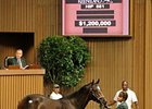 Tapit Colt First Over $1 Million on Day Four