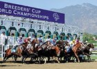 Breeders' Cup Tops Santa Anita Fall Meet