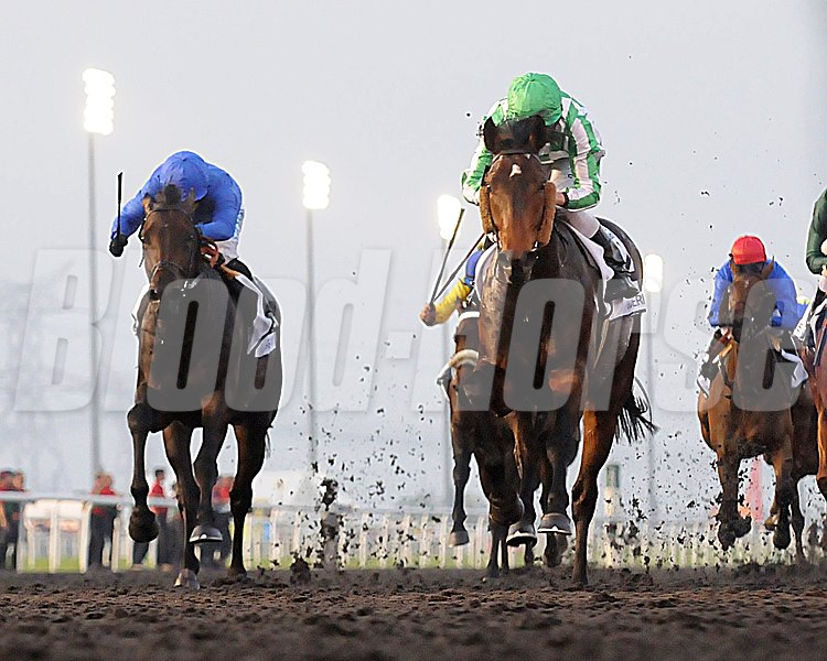Lines of Battle, Ryan Moore up, wins the UAE Derby,  Meydan, March 30th, 2013, Dubai World Cup Day